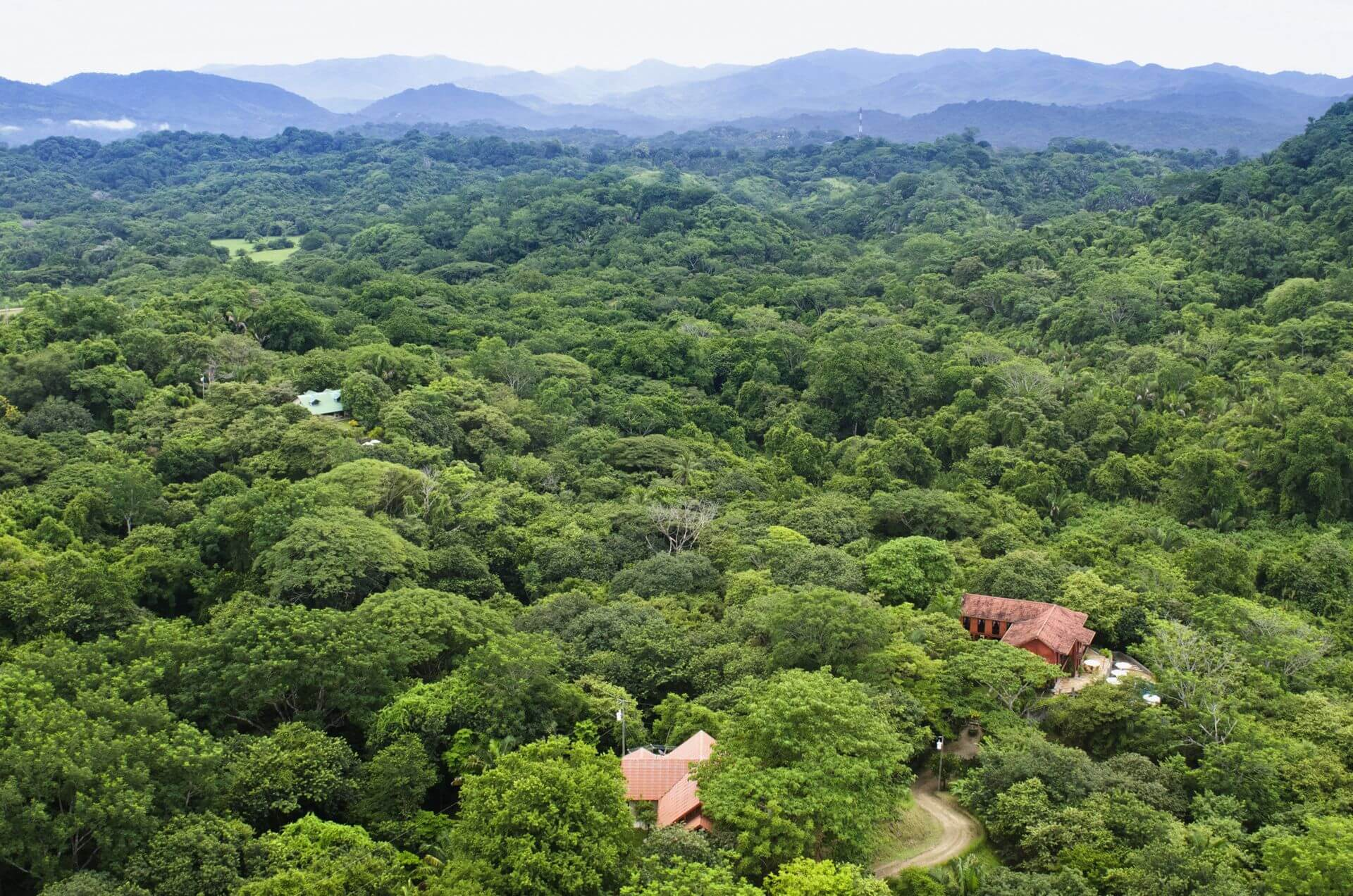 Barrigona Retreat With Your Tribe In The Jungle
