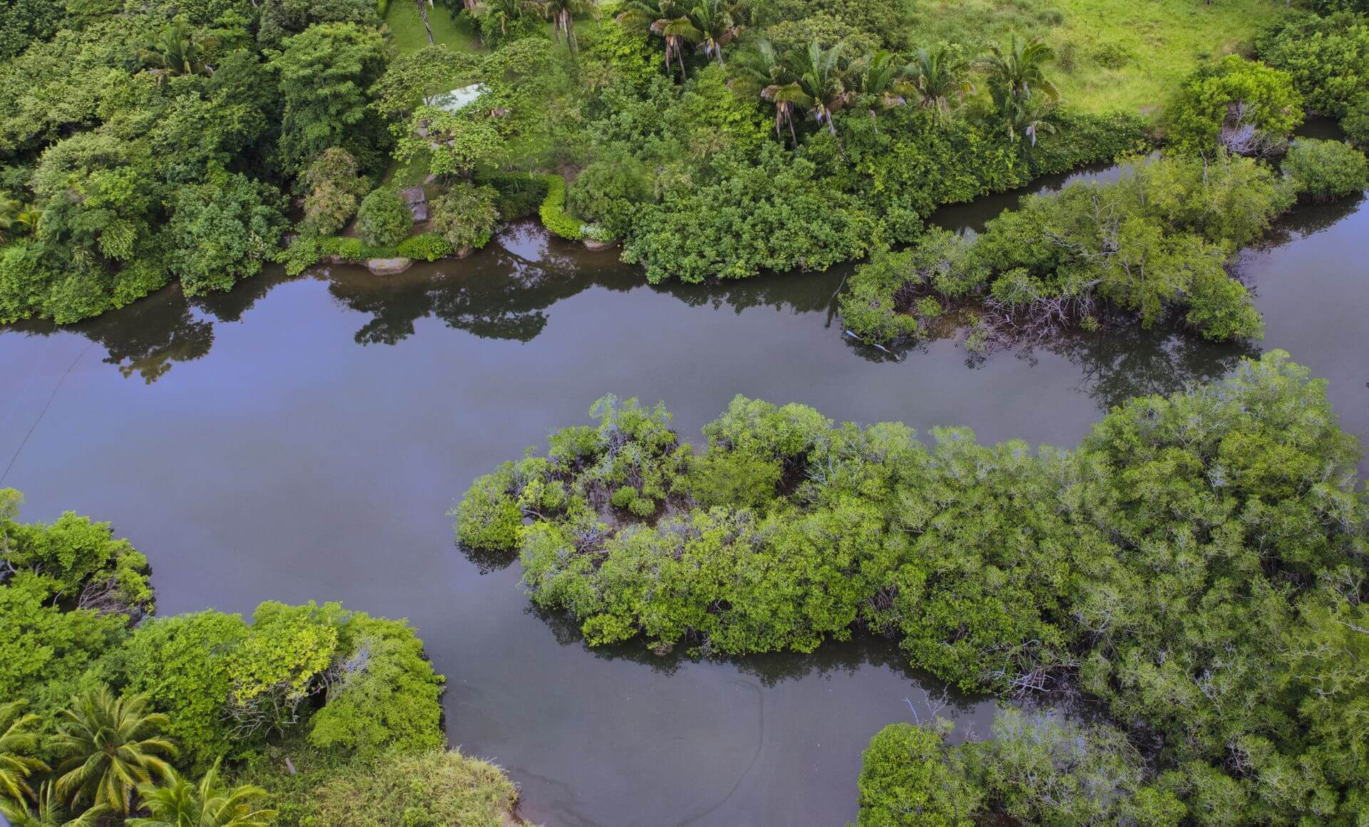 Barrigona Sustainable Nature Costa Rica