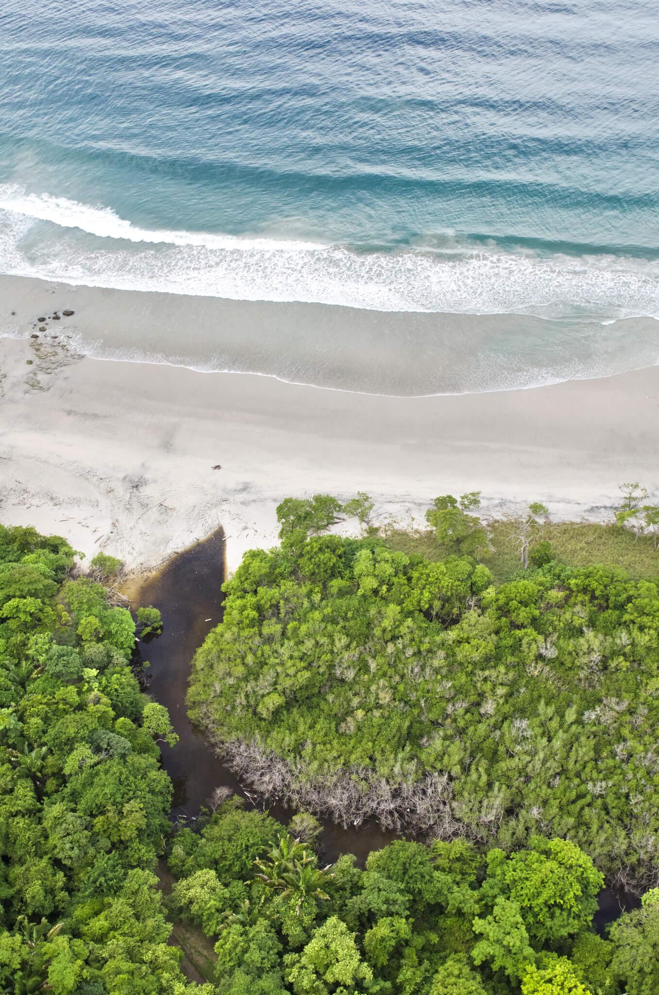 Hacienda Barrigona Retreat By The Ocean Costa Rica
