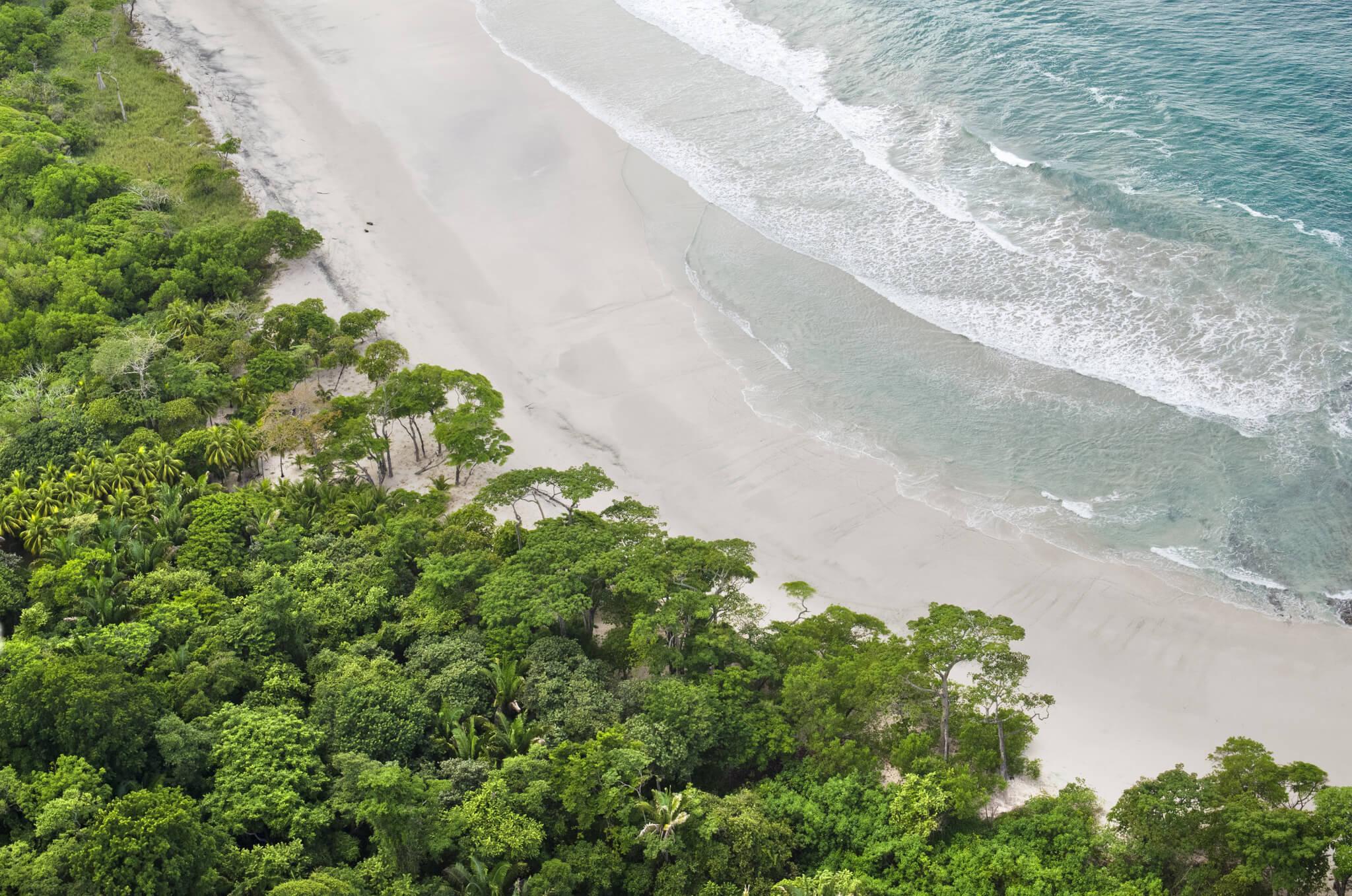 Hacienda Barrigona Jungle Meets Ocean