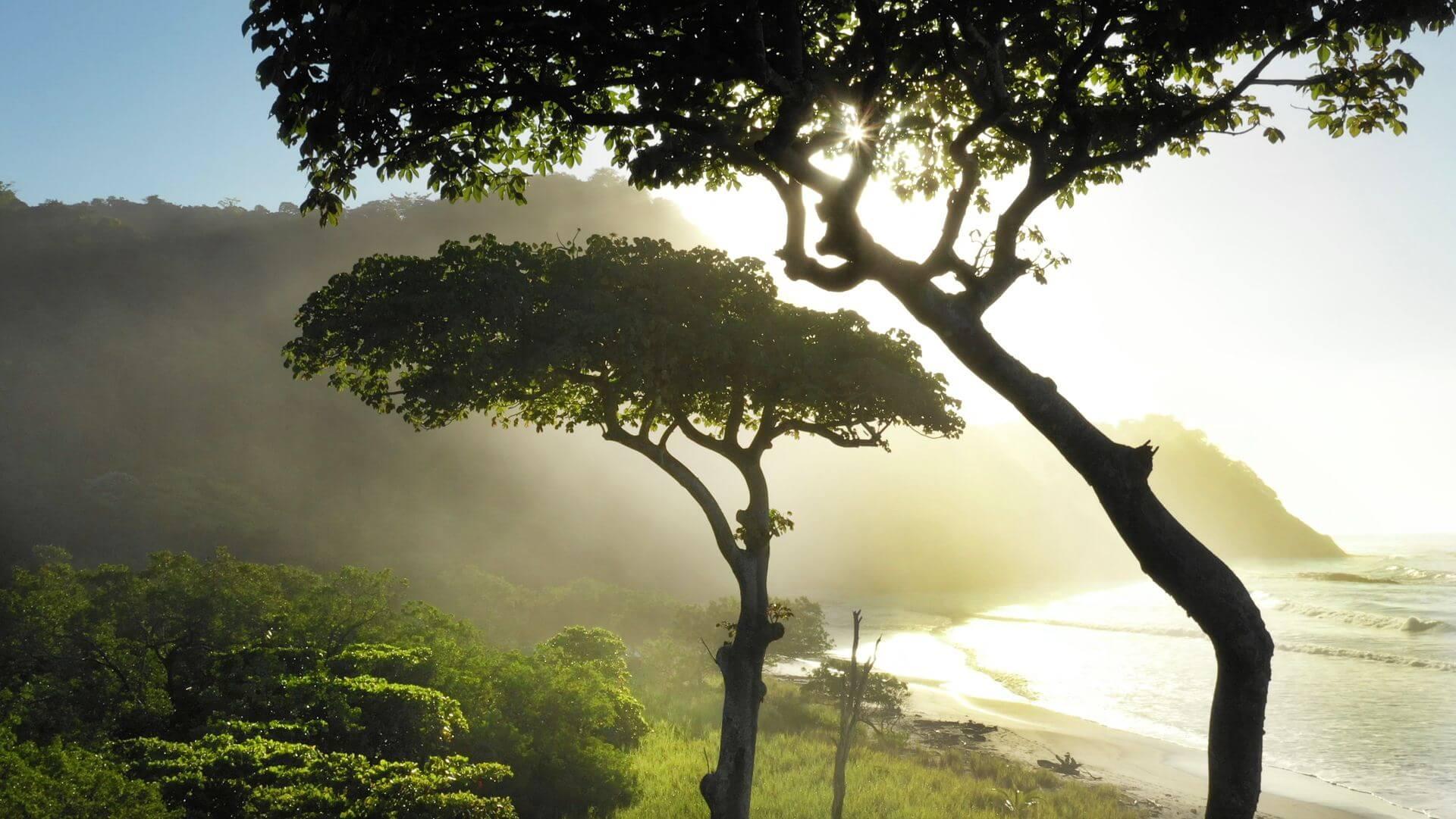 Barrigona Beach Views Costa Rica