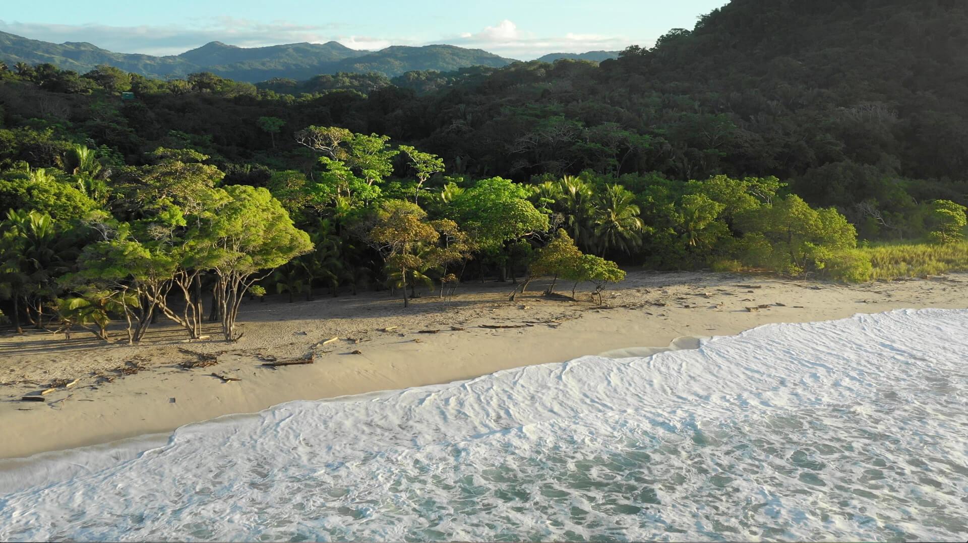 Barrigona Beach Samara Costa Rica