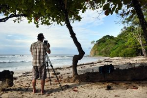 Barrigona Costa Rica Shooting Nature