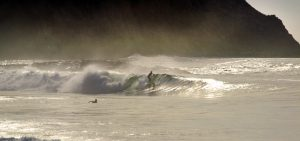 Hacienda Barrigona Catch That Wave