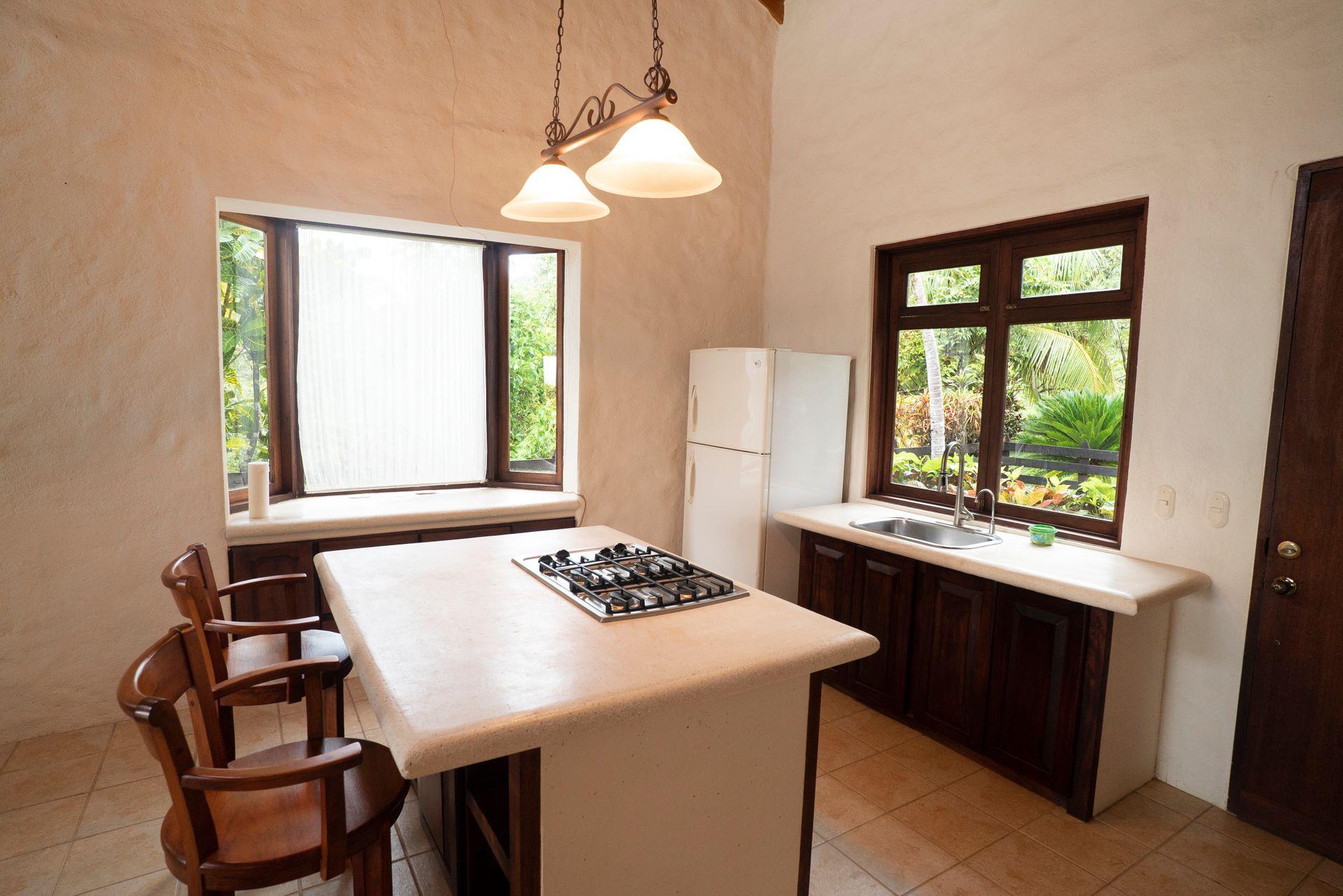 Barrigona Villa Dorada Kitchen